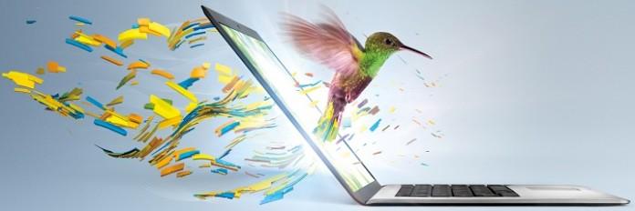 Ultrabook_Hummingbird