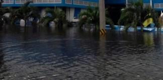 HDD_flood