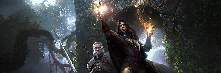 TheWitcher3 717