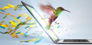 Ultrabook_Hummingbird