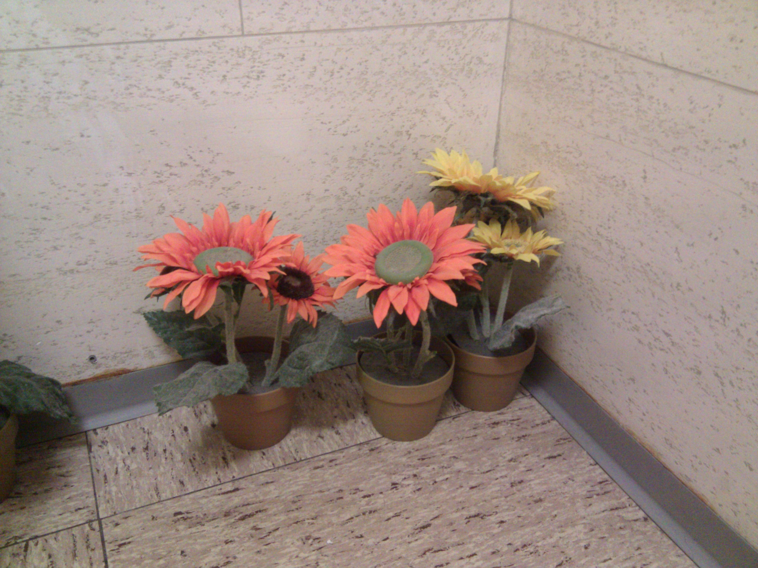 blommorn1